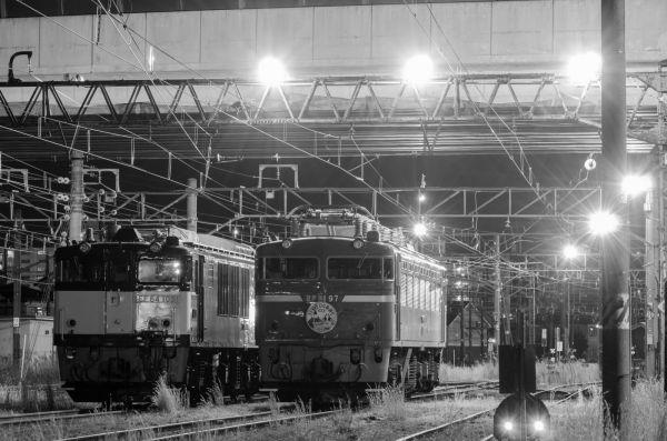 Dsc_19732